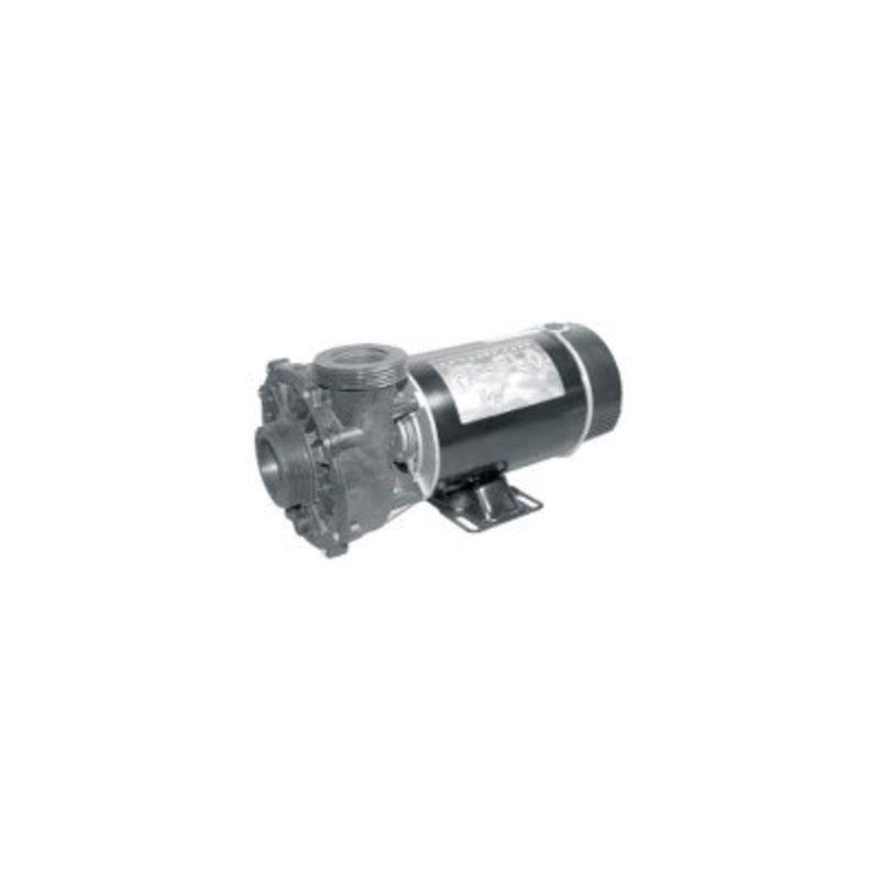 Pump - 1HP, 110V, 2-Speed w/ 2