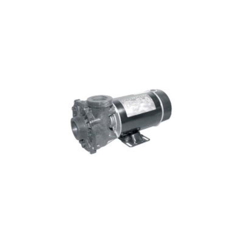 Pump - 1.5HP, 220V, 2SP w/ 2