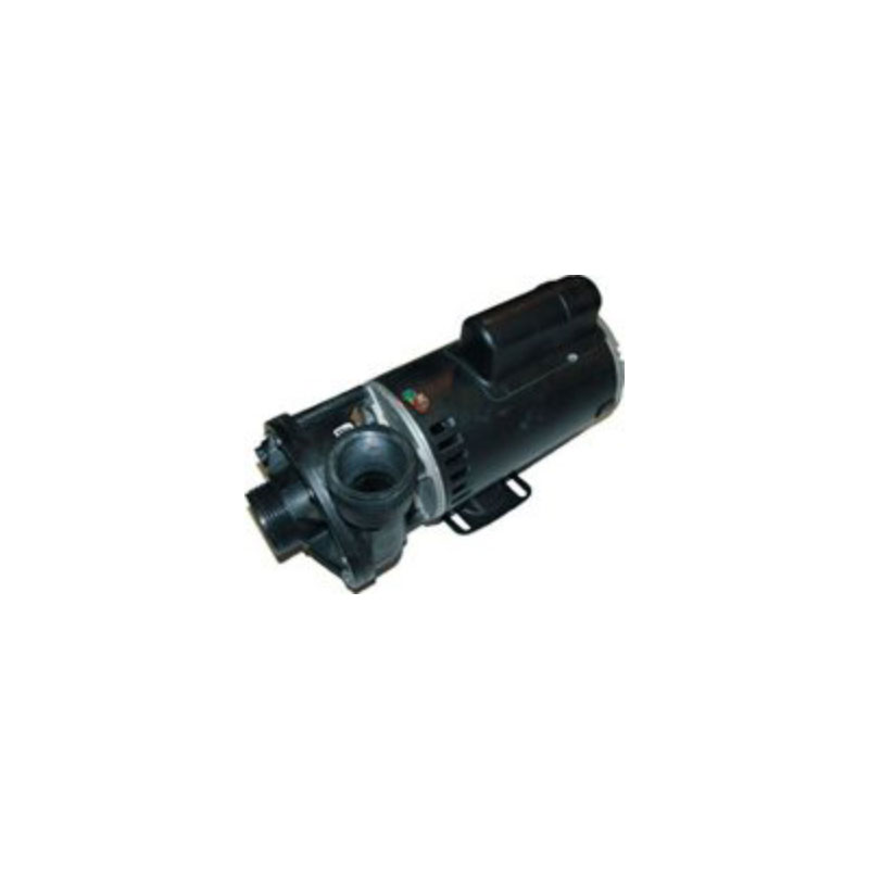 Pump - 2HP,  220V,  2-Speed w/ 1.5