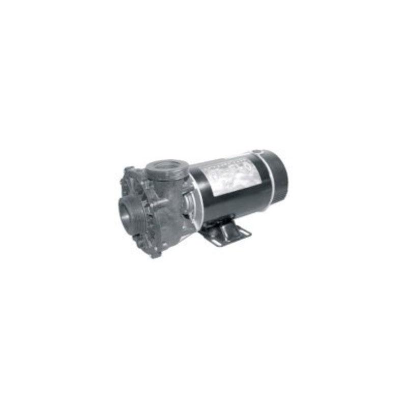 Pump - 4HP, 220V, 2-Speed, 48Fr. w/ 2